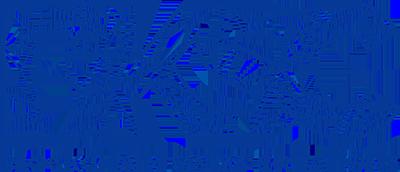 vtfd-partner-bksc